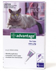 ADVANTAGE CAT LARGE PURPLE 4'S Claws n Paws Pet SUpplies