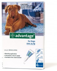 ADVANTAGE DOG Over 25kg GREY 4pk Claws n Paws Pet Supplies