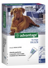 ADVANTAGE DOG over 25kg GREY 6pk Claws n Paws Pet Supplies