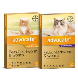 Advocate Flea Worm And Heartworm For Cats Claws N Paws