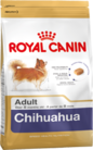 chihuahua-adult_productImage