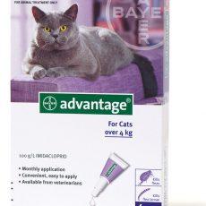ADVANTAGE CAT LARGE PURPLE 4'S Claws n Paws Pet SUpplies