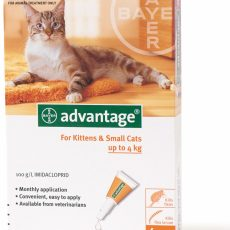 ADVANTAGE CAT SMALL ORANGE 4'S Claws n Paws Pet Supplies