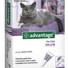 ADVANTAGE CAT LARGE PURPLE 6'S Claws n Paws Pet SUpplies
