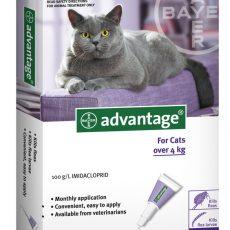 ADVANTAGE CAT LARGE PURPLE 6'S Claws n Paws Pet SUpplies