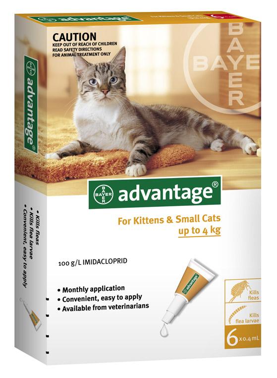 ADVANTAGE CAT SMALL ORANGE 6'S Claws n Paws Pet Supplies
