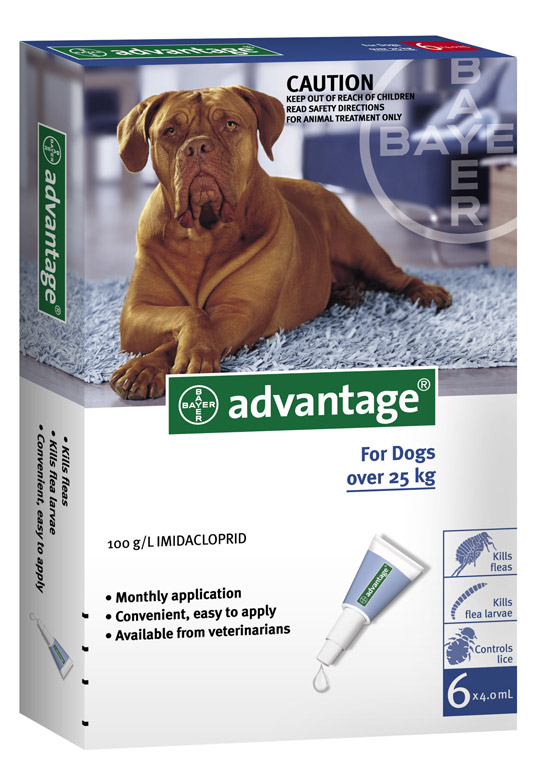 ADVANTAGE DOG over 25kg GREY 6pk - Claws'n'Paws Pet Supplies