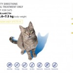 Cat-3-pack - Copy