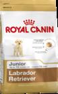 Royal Canin Labrdor Retriever Junior Claws n Paws Pet Supplies